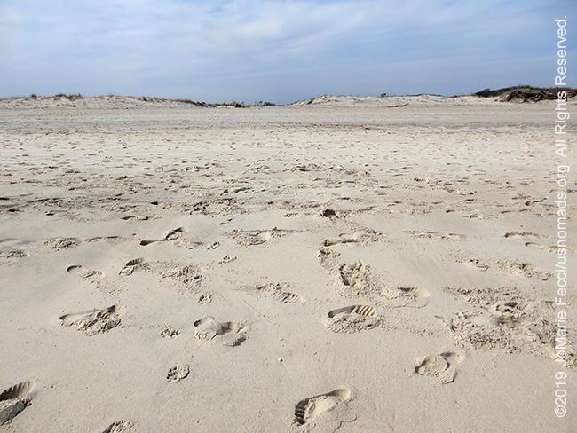 NY_APR2019-0407_LI_FireIsland-beachsand_DSCN2705_650w