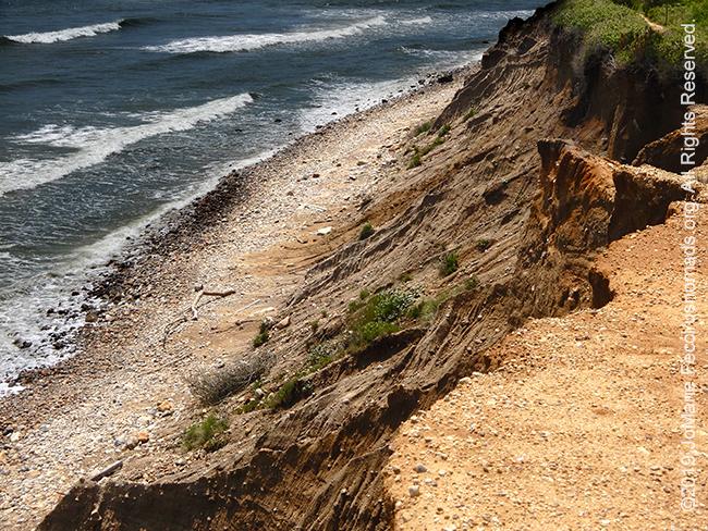 NY_JUN2019_0622_LI_EastEnd-Shadmoor_Cliffs_cliffsfromsidedown_DSCN4829_650w