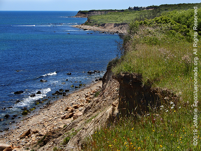 NY_JUN2019_LI_EastEnd-CampHero-cliffs_ruggedcliffsoncoast_DSCN5072_650w