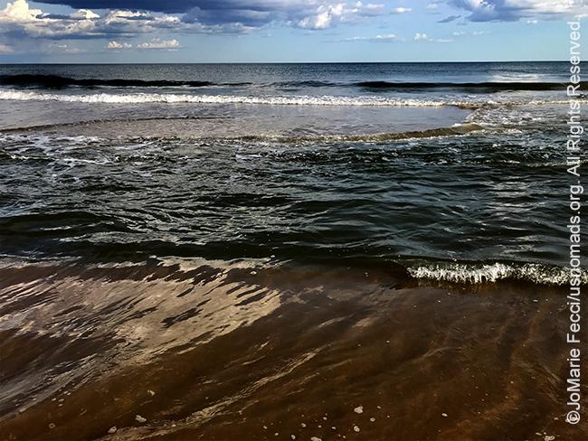 NY_JUN2019_LI_EastEnd-HitherHills_beachwatercolorsea_IMG_8392_650w