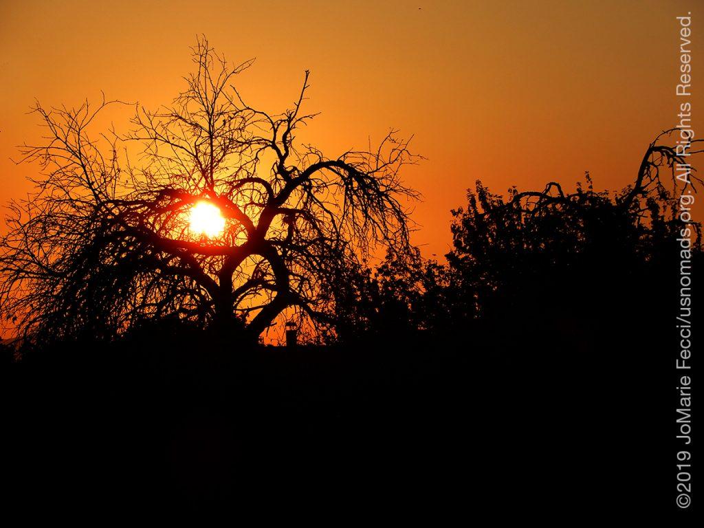 Serbia_Aug2019_Day02_Miliva-sunset_sunthrutreeaseye_DSCN6358_1200w