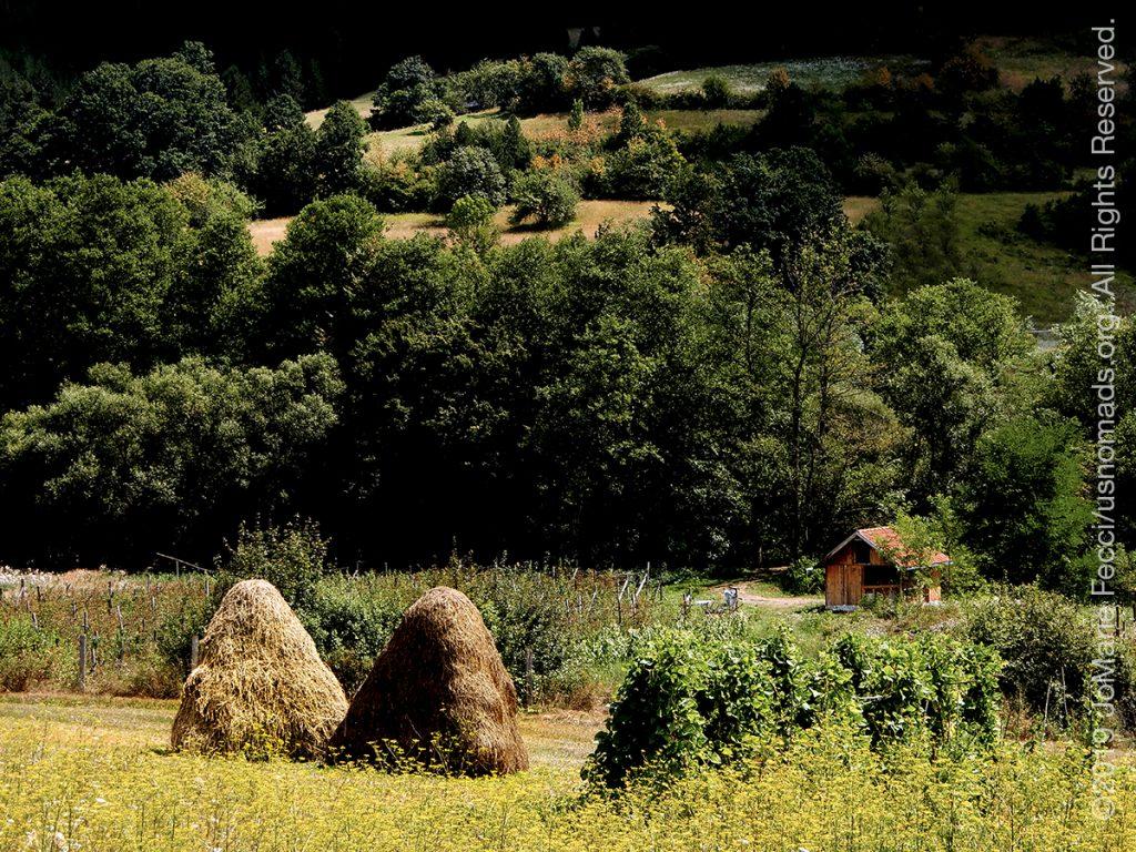 Serbia_Aug2019_Day08_roadtrip-mokragora-fieldswith2haystacks_DSCN6718_1200w