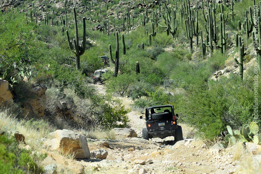 AZ_LONtrip_OCT2019_1005-Day03-TucsonRR_Jeepsgoingalongtrailwithcactus_DSC_0571_1200w
