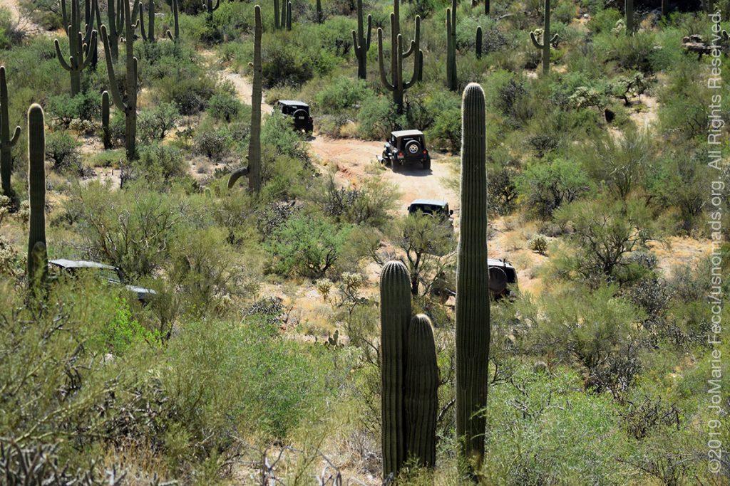 AZ_LONtrip_OCT2019_1005-Day03-TucsonRR_Jeepsinvalleyofcactus_DSC_0591_1200w